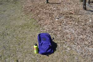 Back to School: Spring Edition